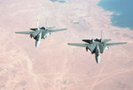 Two US Navy F-14B Tomcats over Iraq during Operation Iraqi Freedom. (MSgt Shaun Withers)