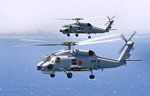 Two Sikorsky S70B-2 Seahawks during a weapons firing exercise off the coast of West Australia on 23 November 2010. (Australian MoD)